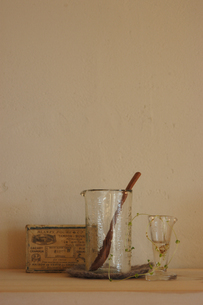 ガラス瓶に入った植物や小物の写真素材 [FYI02928711]