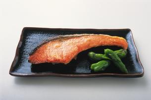 鮭の写真素材 [FYI02928726]