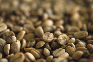 コーヒー豆の写真素材 [FYI02929468]