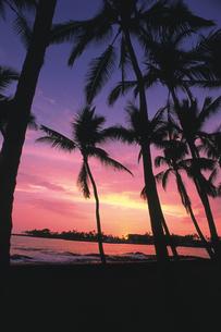 コナビーチの夕日の写真素材 [FYI02929469]