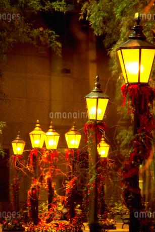 街灯の写真素材 [FYI02929569]