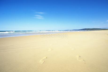 砂浜の写真素材 [FYI02929594]