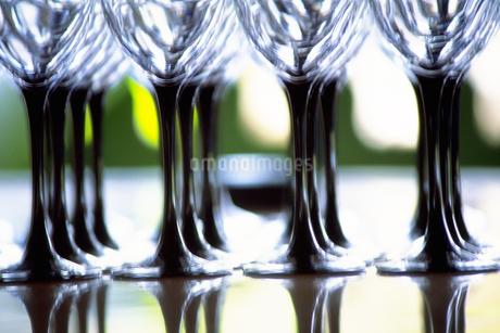 グラスの写真素材 [FYI02929615]
