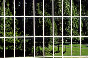 柵の向こうの公園の写真素材 [FYI02929622]