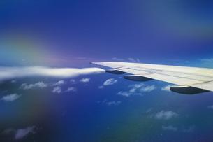翼の写真素材 [FYI02929627]