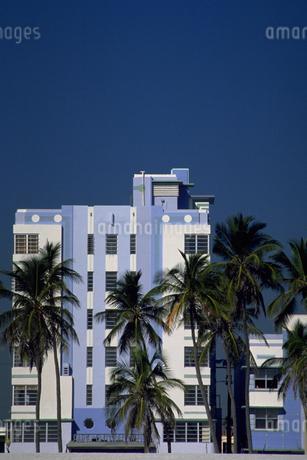 椰子の木のある風景の写真素材 [FYI02929649]