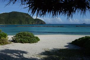 南国沖縄のエメラルドグリーンの海と白い砂浜の写真素材 [FYI02929667]