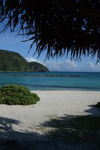 南国沖縄のエメラルドグリーンの海と白い砂浜の写真素材 [FYI02929668]