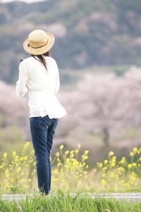 麦わら帽子をかぶった女性の後姿の写真素材 [FYI02930228]