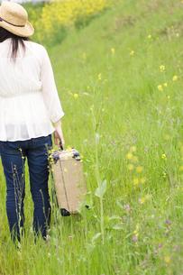 トランクを持って草原を歩く女性の後姿の写真素材 [FYI02930260]