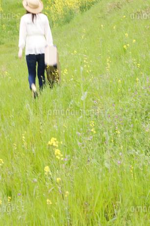 トランクを持って草原を歩く女性の後姿の写真素材 [FYI02930261]
