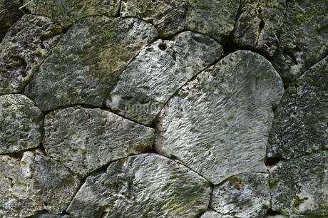 サンゴの化石が確認できる琉球石灰岩の石垣の写真素材 [FYI02930535]