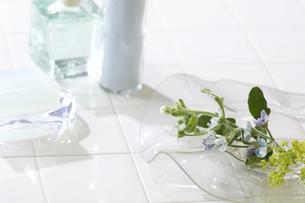 バスルームイメージの写真素材 [FYI02930581]