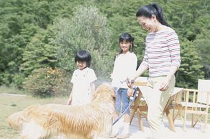 水浴びをする犬と家族の写真素材 [FYI02931417]