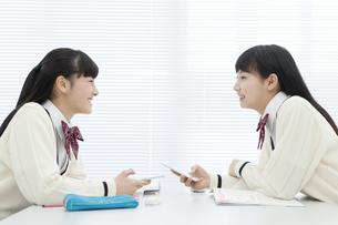 話をしている女子校生の写真素材 [FYI02931934]