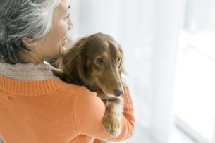 犬を抱いているシニア女性の写真素材 [FYI02932439]