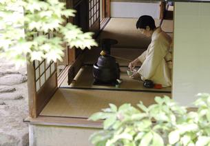 お茶を点てる中高年女性の写真素材 [FYI02932628]