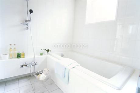 バスルームの写真素材 [FYI02932630]