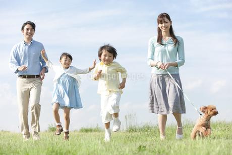 散歩をする家族と犬の写真素材 [FYI02932944]
