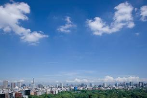 東京の風景の写真素材 [FYI02933534]