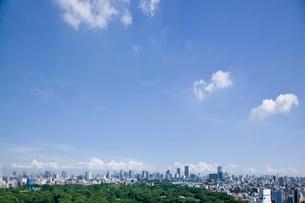 東京の風景の写真素材 [FYI02933536]
