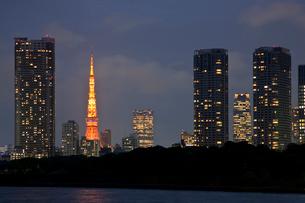 東京タワーの写真素材 [FYI02933626]