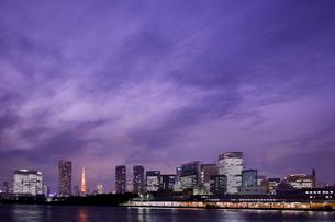 東京タワーのある風景の写真素材 [FYI02933631]
