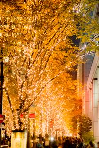 丸の内クリスマスイルミネーションの写真素材 [FYI02933797]