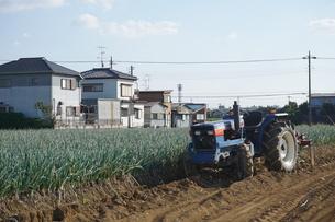 畑の写真素材 [FYI02933852]