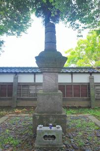 真田信之の墓の写真素材 [FYI02934273]