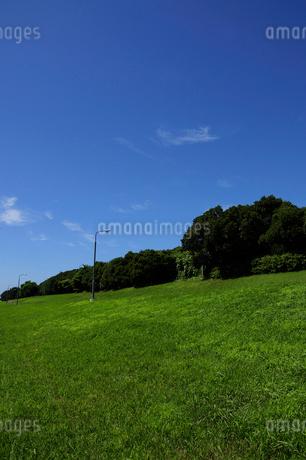 若洲海浜公園の写真素材 [FYI02934679]