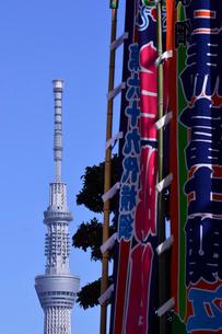 東京スカイツリーと相撲旗の写真素材 [FYI02934826]