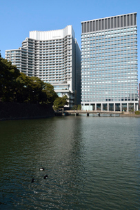 和田倉濠と丸の内のビル群(左、パレスホテル)の写真素材 [FYI02934844]