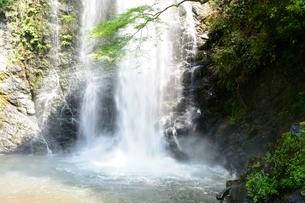 新緑の箕面大滝の写真素材 [FYI02934976]