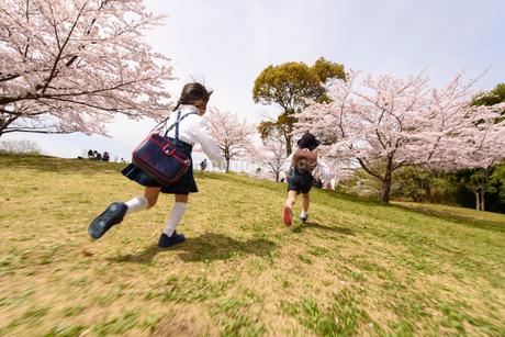 公園をかけっこする後ろ姿の女の子と男の子の写真素材 [FYI02935098]