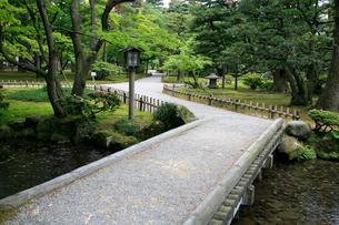 兼六園の曲水にかかる橋の写真素材 [FYI02935167]