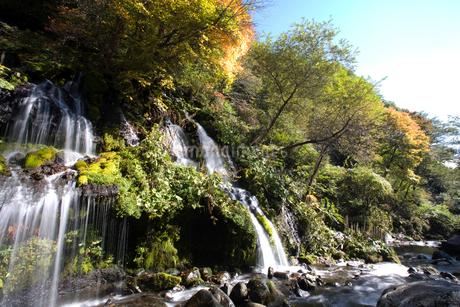 吐竜の滝の写真素材 [FYI02935171]