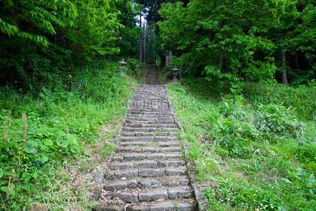 石の階段の写真素材 [FYI02935201]