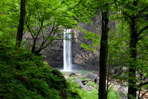 苗名の滝の写真素材 [FYI02935214]