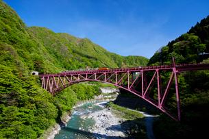 黒部峡谷鉄道と黒部峡谷の写真素材 [FYI02935290]