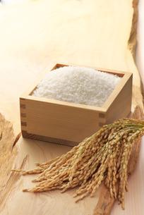 枡に入った米と稲穂の写真素材 [FYI02935407]