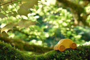 木の車の写真素材 [FYI02935426]