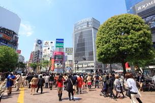 渋谷駅前の写真素材 [FYI02935564]