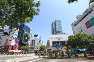 渋谷駅前の写真素材 [FYI02935569]