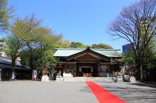 東郷神社の写真素材 [FYI02935603]