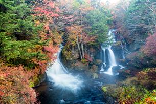 竜頭ノ滝 紅葉の写真素材 [FYI02935671]