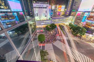 夜の渋谷交差点の写真素材 [FYI02935682]