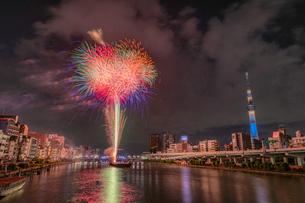 東京スカイツリーと隅田川花火大会の写真素材 [FYI02935694]