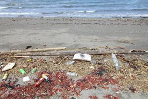 海岸に打ち寄せられたゴミの写真素材 [FYI02935731]