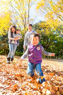 秋の公園で遊ぶ4人家族の写真素材 [FYI02935859]
